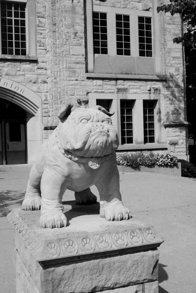 ButlerU-Bulldog-grayscales